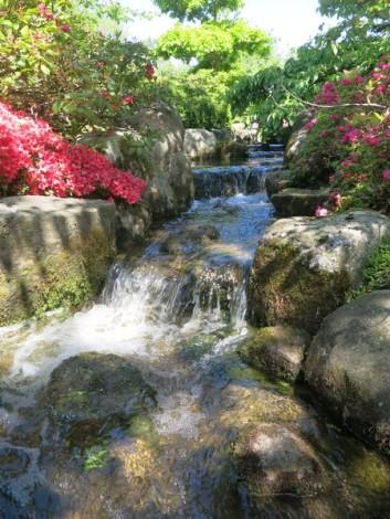 2015 De japanske haver 050615 (31)